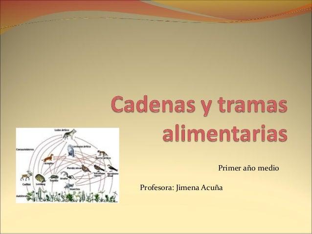 Profesora: Jimena Acuña Primer año medio