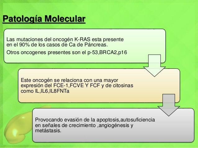 Patología Molecular Las mutaciones del oncogén K-RAS esta presente en el 90% de los casos de Ca de Páncreas. Otros oncogen...