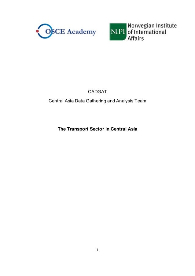 1    CADGAT Central Asia Data Gathering and Analysis Team The Transport Sector in Central Asia