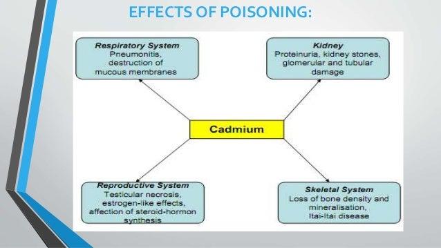 mechanism of cadmium toxicity