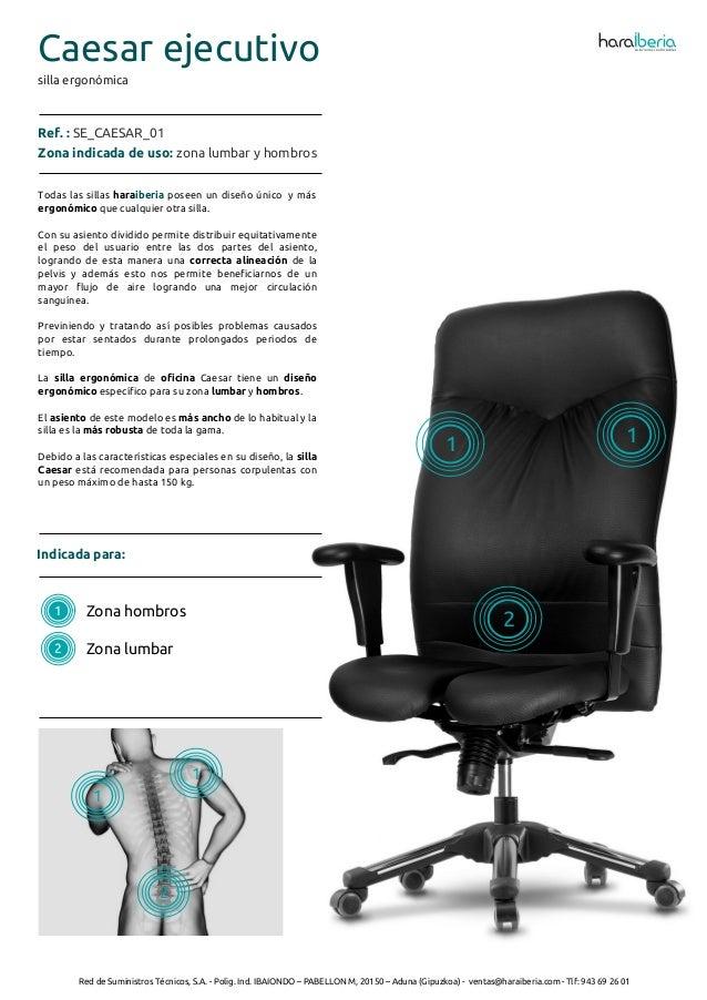 Ficha t cnica de la silla ergon mica para oficina caesar for Tecnica de oficina wikipedia