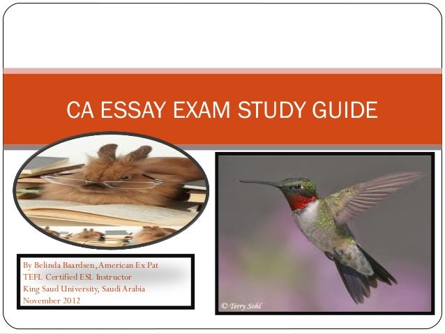 Belinda Summary & Study Guide