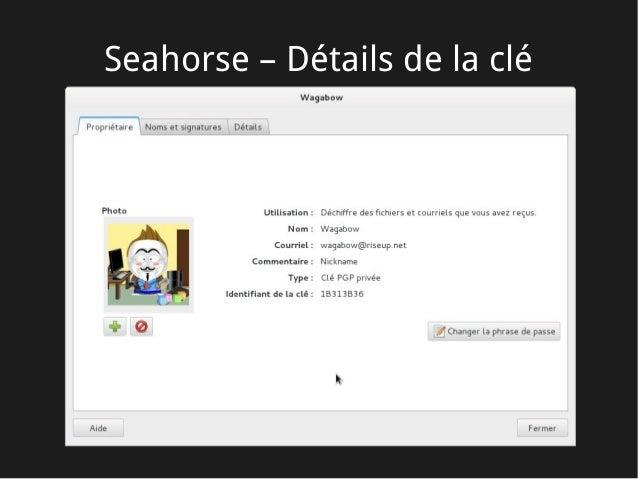 Seahorse – Détails de la clé
