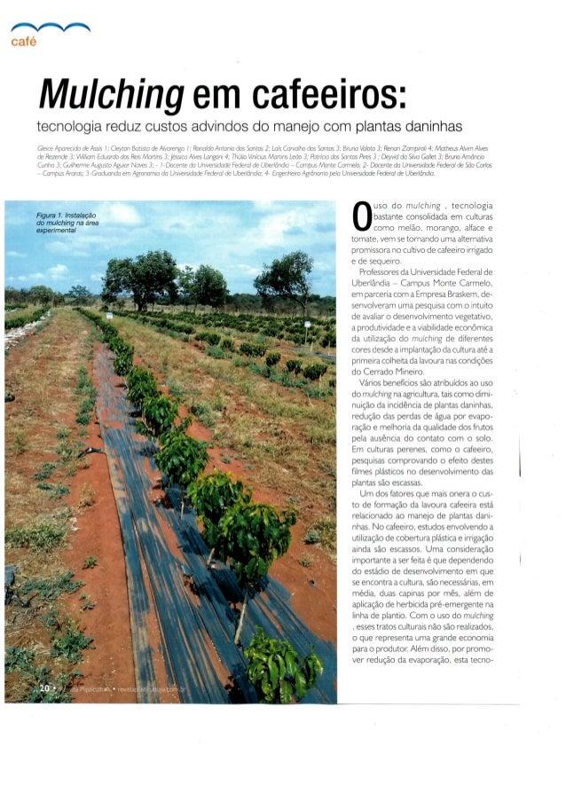 Revista Plasticultura