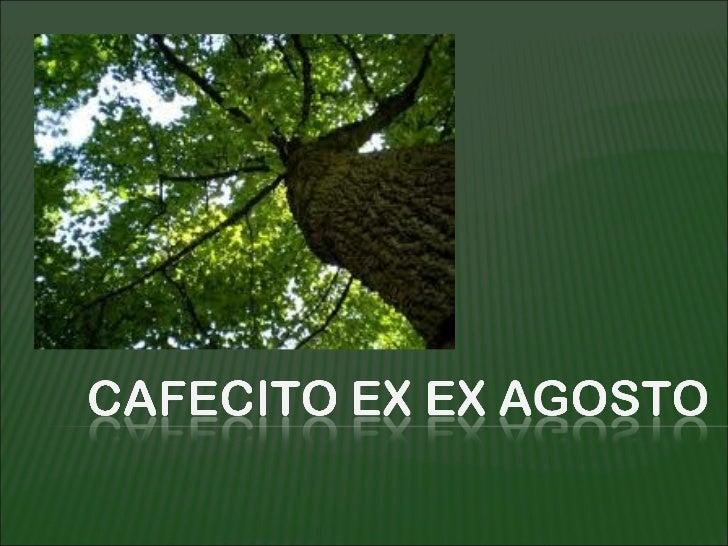En el Cafecito de Agosto compartimos con los                  Jóvenes de OJAS(Organización Juvenil Ambientalista Salvadore...