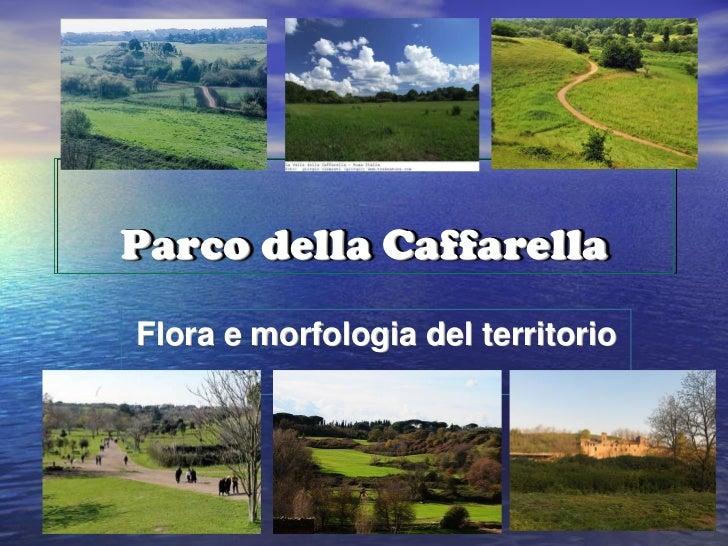 Parco della CaffarellaFlora e morfologia del territorio