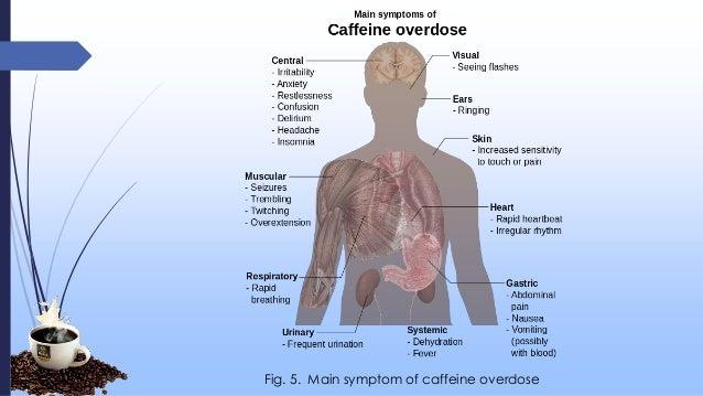 caffeine presentation, Skeleton