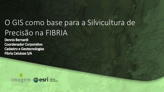 O GIS como base para a Silvicultura de Precisão na FIBRIA Dennis Bernardi Coordenador Corporativo Cadastro e Geotecnologia...
