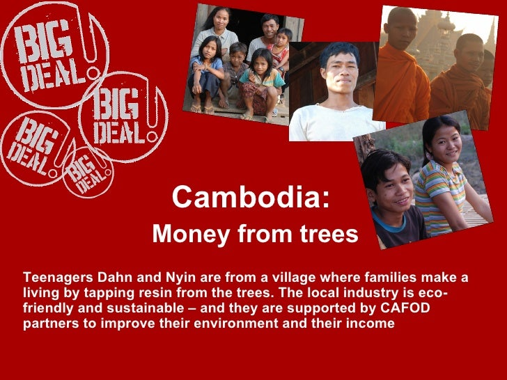 Cambodia:  Money from trees Teenagers Dahn and Nyin are from a village where families make a living by tapping resin from ...