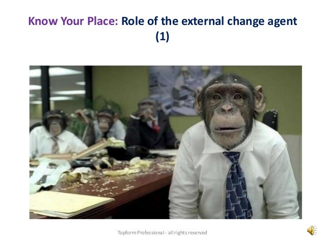 """internal or external change agents Librarians as change agents: pla conference sessions to teach public   orientation of libraries and librarians from internal to external """"turning."""