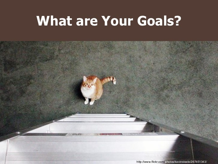 What are Your Goals? http://www.flickr.com/ photos/kevinsteele/267451343/