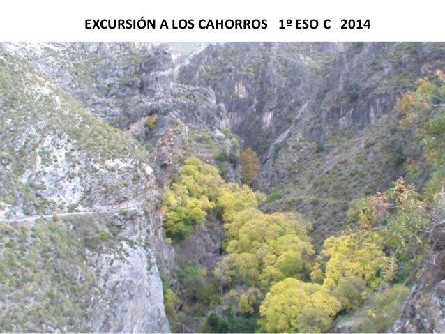 EXCURSIÓN A LOS CAHORROS 1º ESO C 2014