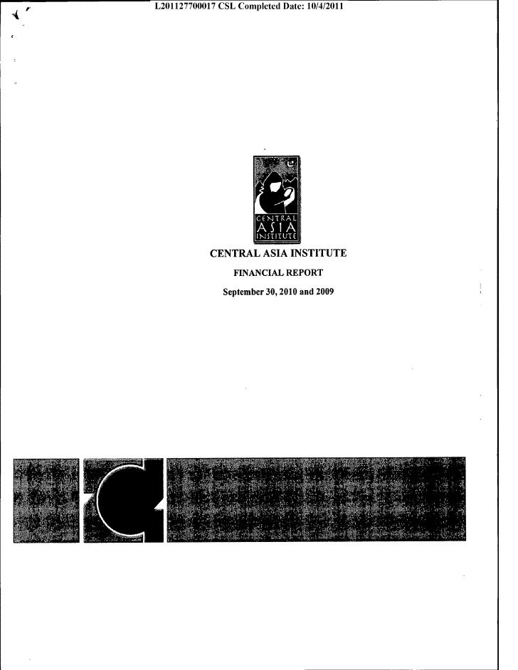 Cai audited financial report unexpurgated 2010 2009