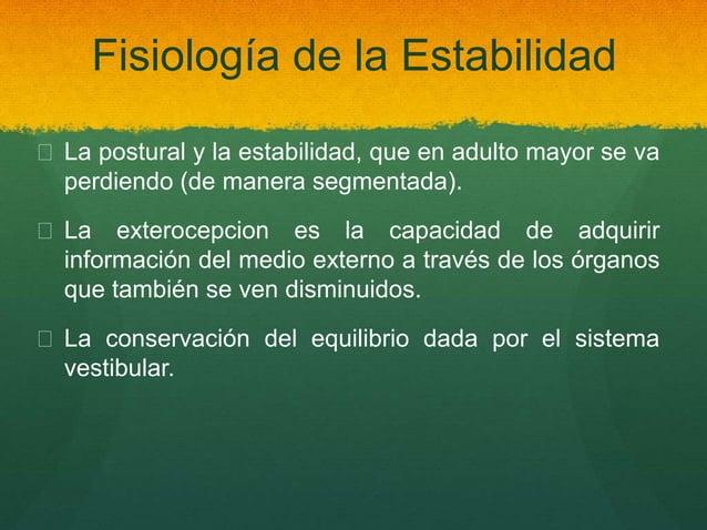 Fisiología de la Estabilidad  La postural y la estabilidad, que en adulto mayor se va perdiendo (de manera segmentada). ...