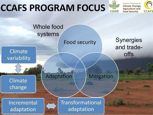 global food security under climate change essay Climate change could potentially interrupt progress toward a world without hunger a robust and coherent global pattern is discernible of the impacts of climate change on crop productivity that could have consequences for food availability the stability of whole food systems may be at risk under.
