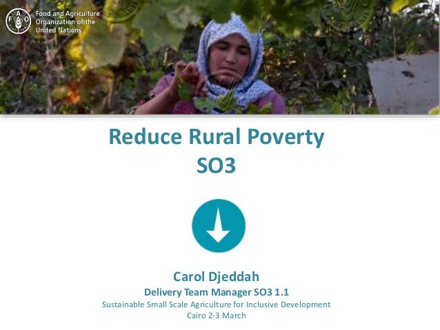 Reduce Rural Poverty SO3 Carol Djeddah Delivery Team Manager SO3 1.1 Sustainable Small Scale Agriculture for Inclusive Dev...