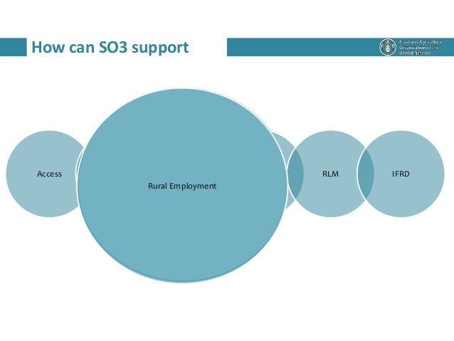 How can SO3 support Access Rural employment Social Protection RWEE RLM IFRD Rural Employment
