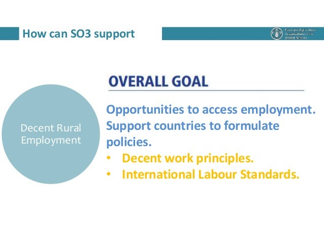 How can SO3 support Decent Rural Employment Opportunities to access employment. Support countries to formulate policies. •...