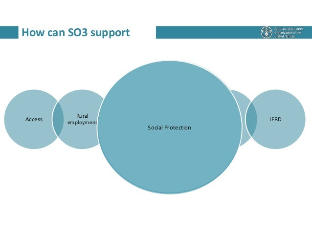 How can SO3 support Access Rural employment Social Protection RWEE RLM IFRD Social Protection