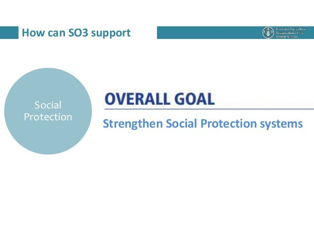How can SO3 support Social Protection Strengthen Social Protection systems