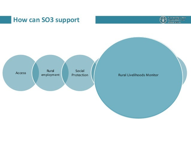 How can SO3 support Access Rural employment Social Protection RWEE RLM IFRD Rural Livelihoods Monitor