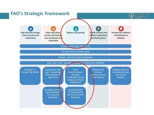 FAO's Strategic Framework