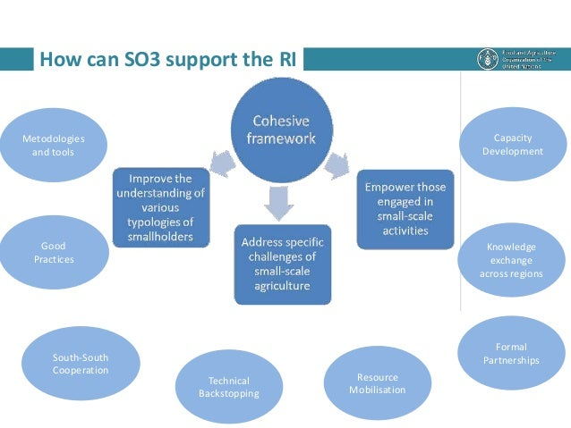 How can SO3 support the RI Metodologies and tools Good Practices South-South Cooperation Technical Backstopping Resource M...