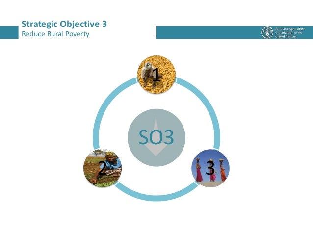 SO3 1 32 Strategic Objective 3 Reduce Rural Poverty