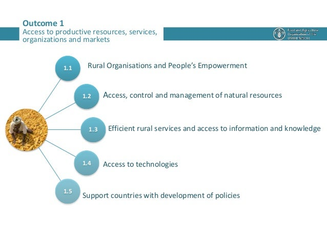 Outcome 1 Access to productive resources, services, organizations and markets 1.1 1.2 1.3 1.4 1.5 Rural Organisations and ...