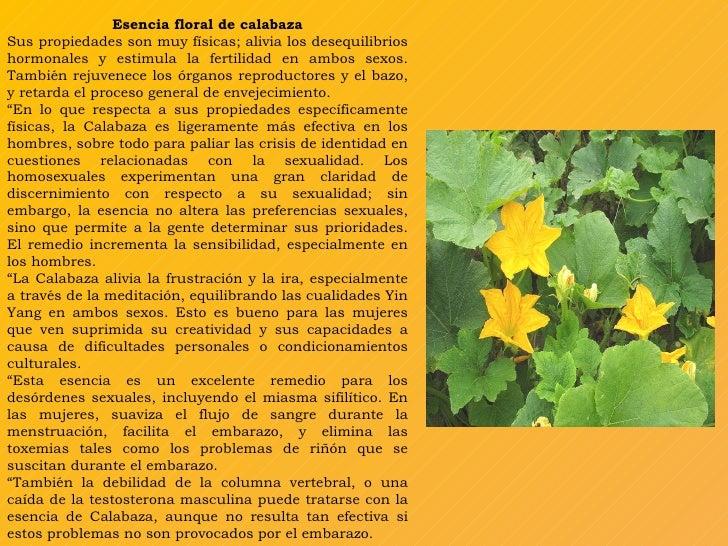 Calabaza for Marmol caracteristicas y usos
