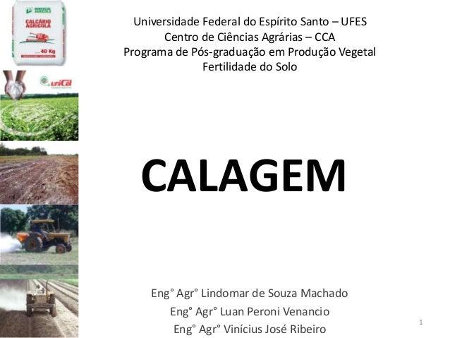 Universidade Federal do Espírito Santo – UFES Centro de Ciências Agrárias – CCA Programa de Pós-graduação em Produção Vege...