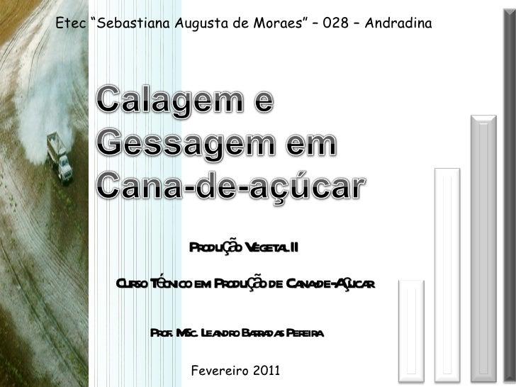 """Produção Vegetal II Curso Técnico em Produção de Cana-de-Açucar Etec """"Sebastiana Augusta de Moraes"""" – 028 – Andradina Prof..."""
