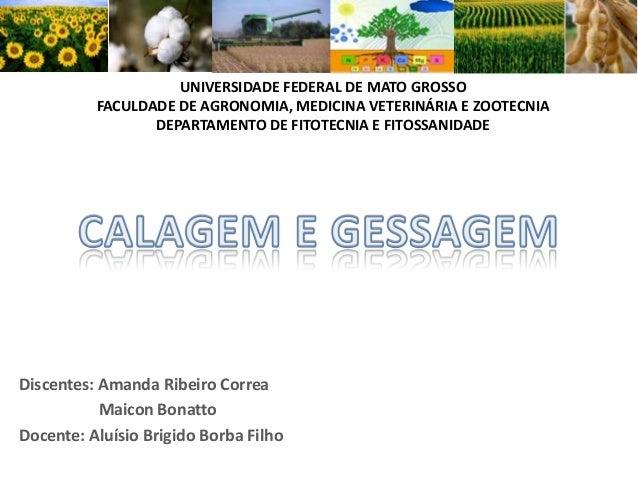 UNIVERSIDADE FEDERAL DE MATO GROSSO FACULDADE DE AGRONOMIA, MEDICINA VETERINÁRIA E ZOOTECNIA DEPARTAMENTO DE FITOTECNIA E ...