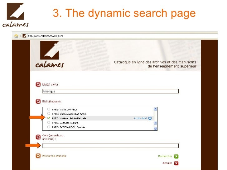 3. The dynamic search page