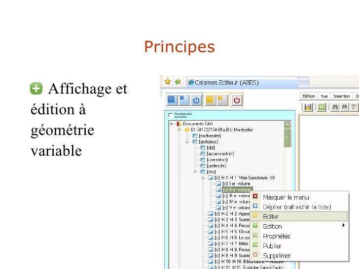 Principes <ul><li>Affichage et  </li></ul><ul><li>édition à  </li></ul><ul><li>géométrie  </li></ul><ul><li>variable </li>...