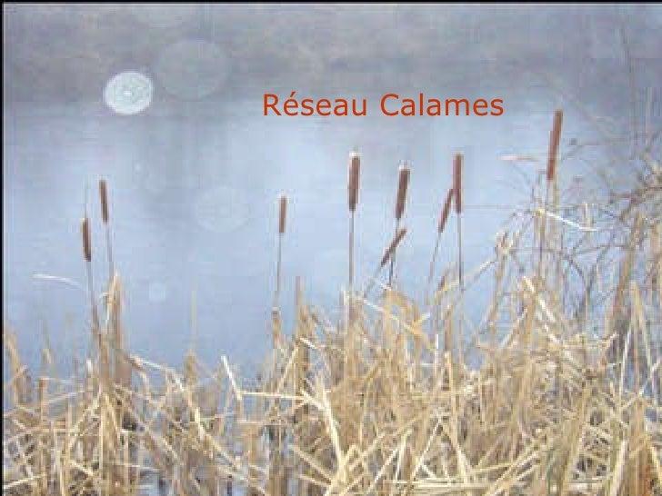 Réseau Calames