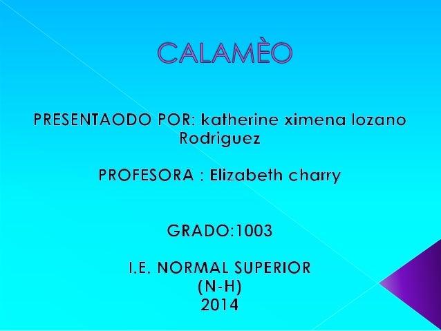  Calameo es una herramienta que  ofrece la posibilidad de crear, alojar y  compartir publicaciones interactivas.  Admite ...