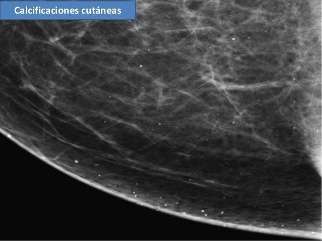 Cl nica e Investigaci n en Ginecolog a y Obstetricia