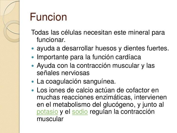 Más en esquema metabolismo celular