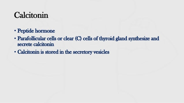 Calcitonin- Physiological actions I Calcium homeostasis 3 I Endocrine Physiology  Slide 2