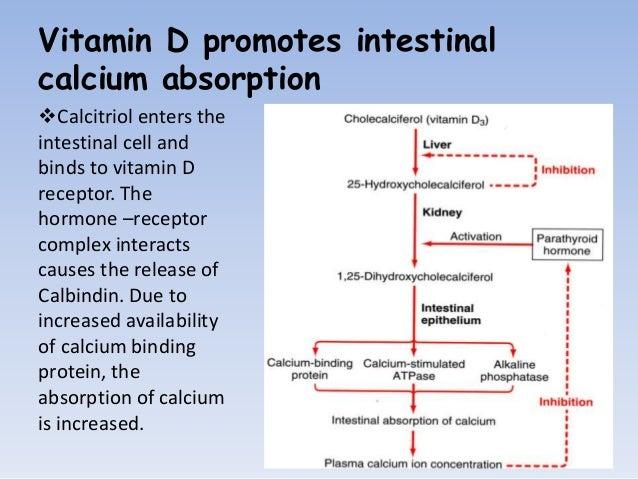 metabolism glucidic crescut la nivel cerebral a explicat