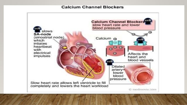 calcium channel blockers, Skeleton
