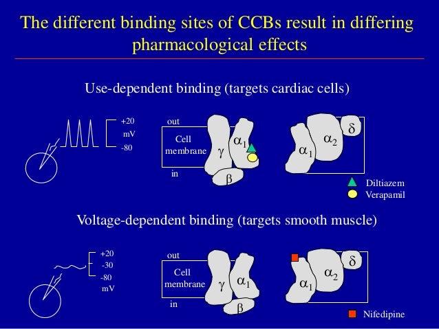 calcium channel blockers (1), Skeleton
