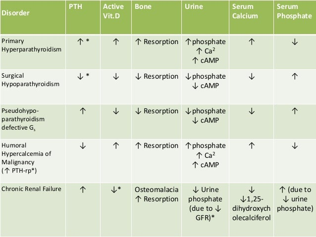 pth and vitamin d relationship