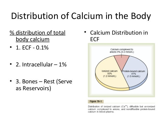 an analysis of the significance of vitamins in the body Topic 1: nutrition & your body • students understand the role each nutrient plays in the body • students recognize the importance of a carries vitamins.