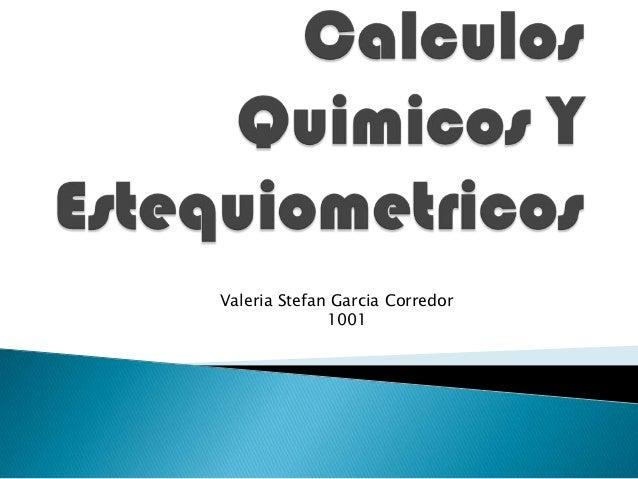 Valeria Stefan Garcia Corredor 1001