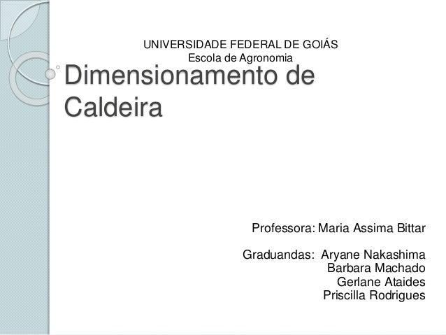 Dimensionamento de Caldeira Professora: Maria Assima Bittar Graduandas: Aryane Nakashima Barbara Machado Gerlane Ataides P...