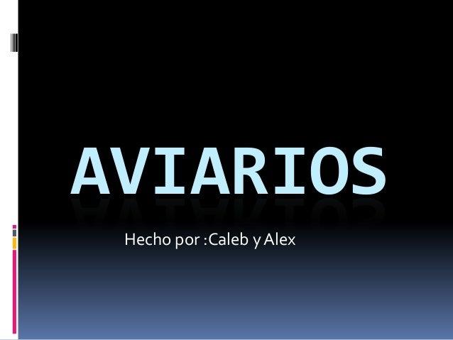 AVIARIOS Hecho por :Caleb y Alex