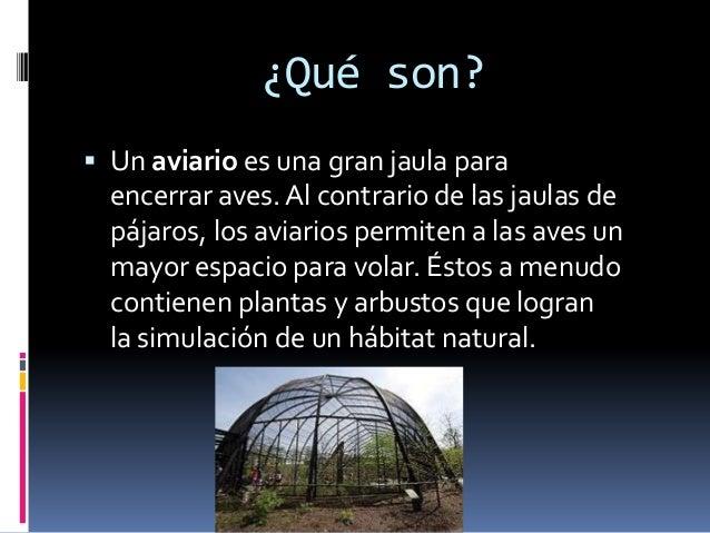 ¿Qué son?  Un aviario es una gran jaula para encerrar aves. Al contrario de las jaulas de pájaros, los aviarios permiten ...