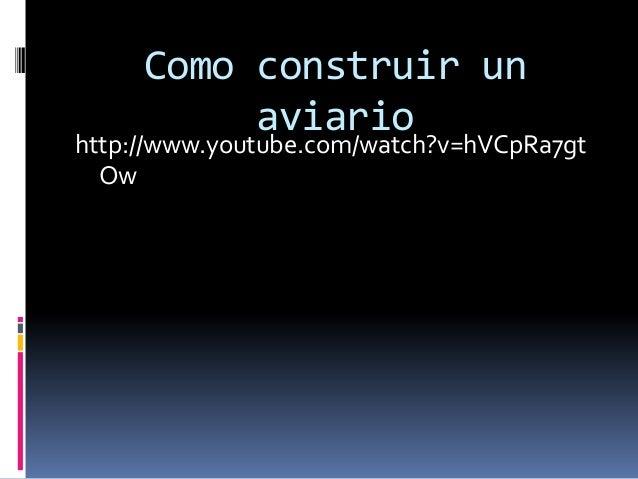 Como construir un aviario http://www.youtube.com/watch?v=hVCpRa7gt Ow